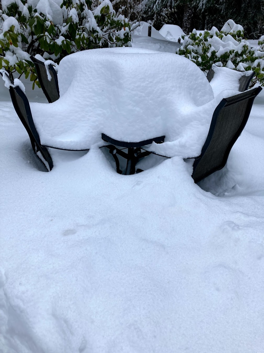 snow covered table and chairs